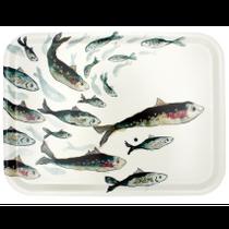 Fishy Friends Tray