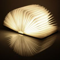 Gingko Smart BookLight