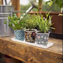 V&A 3 Plant Pots