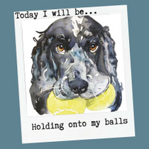 """Holding onto my Balls"" by Jo Scott"