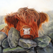 """Dougal"" by Caroline Riley"