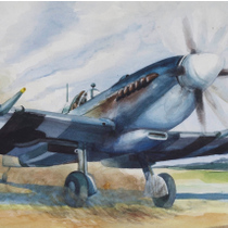 """Spitfire"" by Joe Cole"