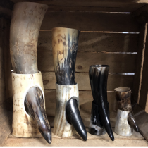 Drinking Horns on Stand