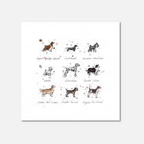 Dog Breeds Limited Edition Print