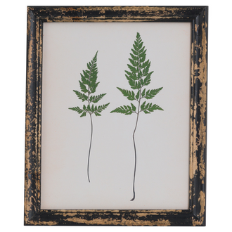 Rustic Framed Botanical Pair Of Ferns Picture