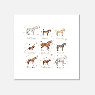 Horse Breeds Limited Edition Print
