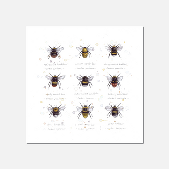 Buzz & Bumble Limited Edition Print