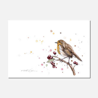 Robin Study Limited Edition Print