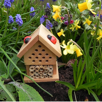 Gift in a Tin - Make your own Insect House