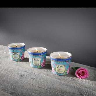 Botanic Fine Porcelain fragrance candle
