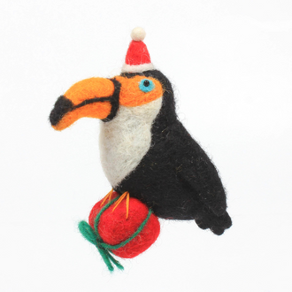 Toucan with Present