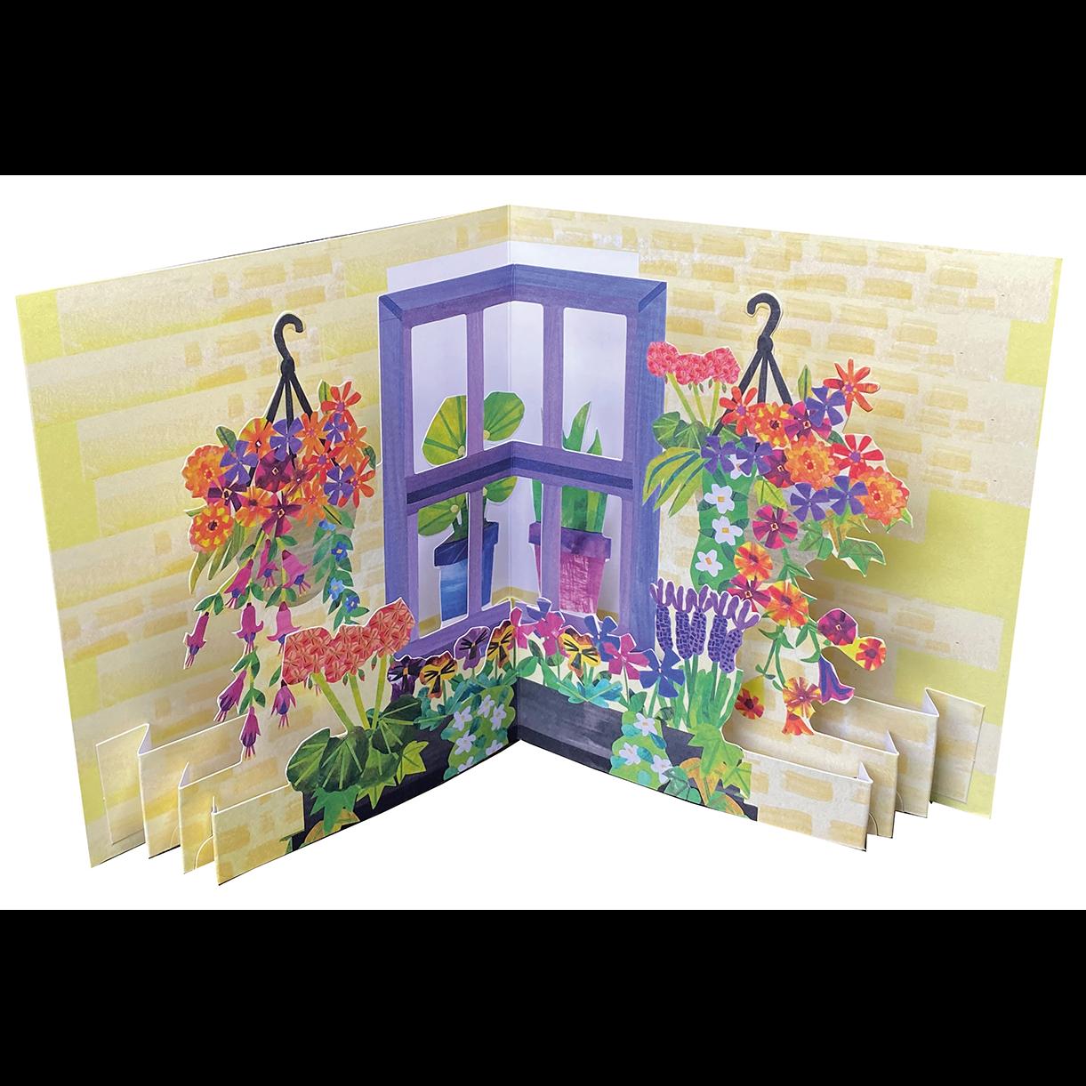 GARDENS: WINDOW BOX