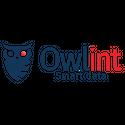 OWLINT