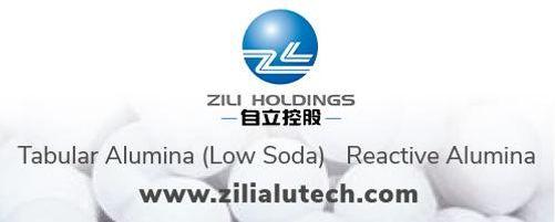 Zili USA LLC