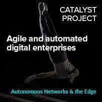 Agile and automated digital enterprises