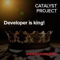 Developer is King!